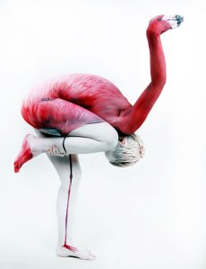 Human Flamingo by Gesine Marwedel4