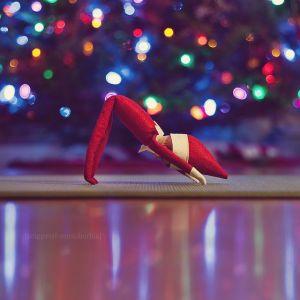 Downward dog Santa